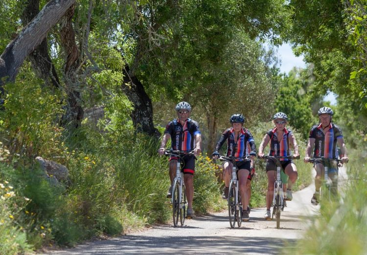 Picture 2: Fred Rompelberg 268 km: Sale of rental bikes from Mallorca. Just €548,-!! With 100% guarantee!