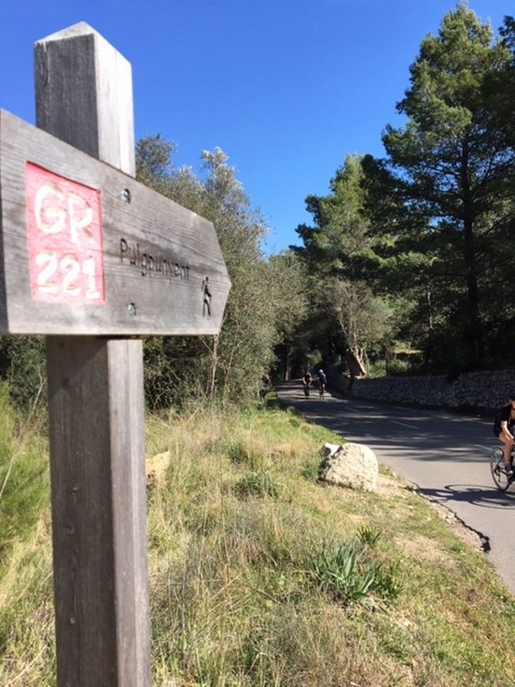 Picture 18: Fred Rompelberg 268 km: Especially for the amazing bookings for 2019, a 7th trip to Mallorca completely costless!