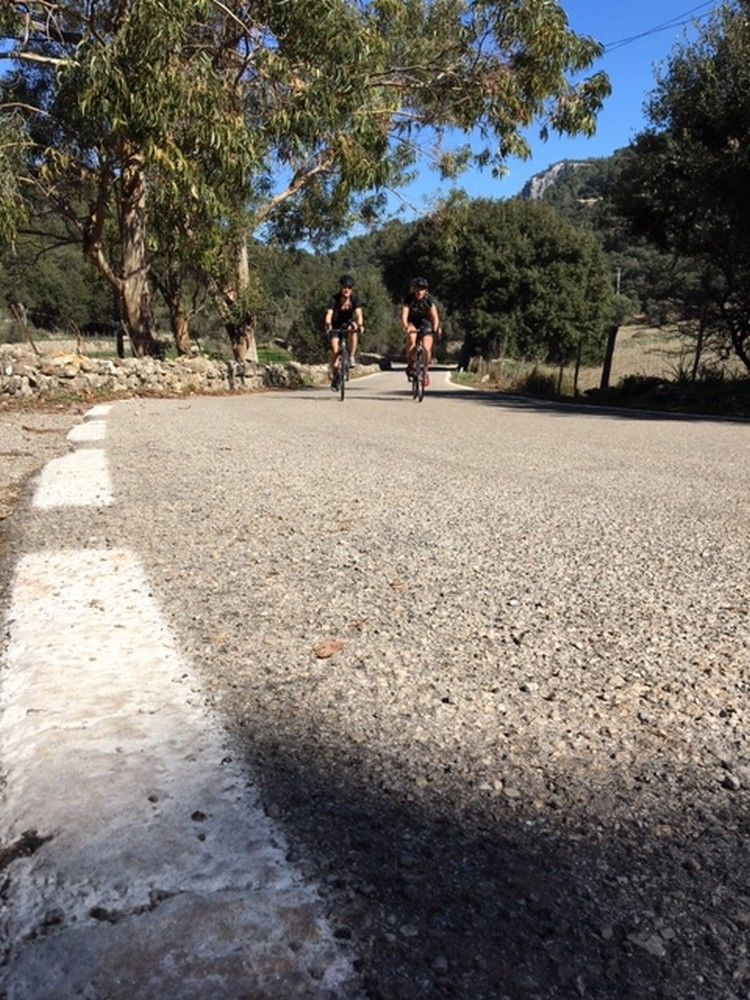 Picture 19: Fred Rompelberg 268 km: Especially for the amazing bookings for 2019, a 7th trip to Mallorca completely costless!
