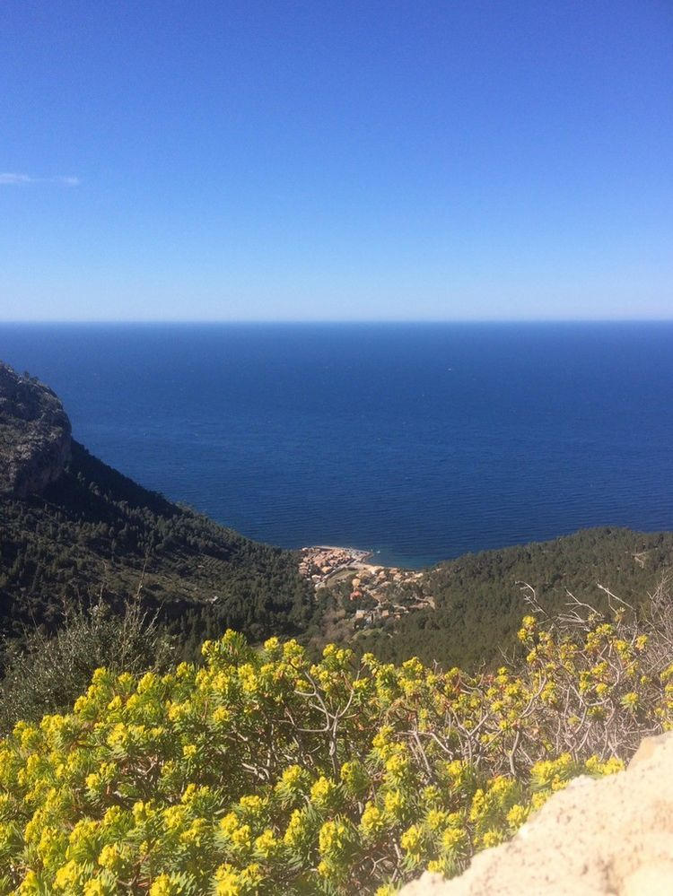 Picture 15: Fred Rompelberg 268 km: Especially for the amazing bookings for 2019, a 8th trip to Mallorca completely costless!