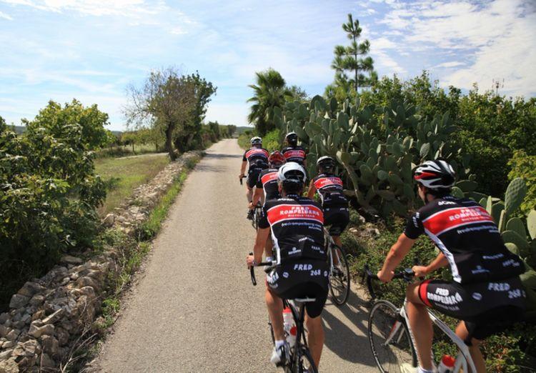 Picture 19: Fred Rompelberg 268 km: Come to Mallorca and take advantage of our new Fuji bikes!